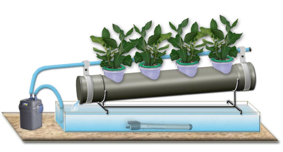 Поверхностные насосы для гидропоники