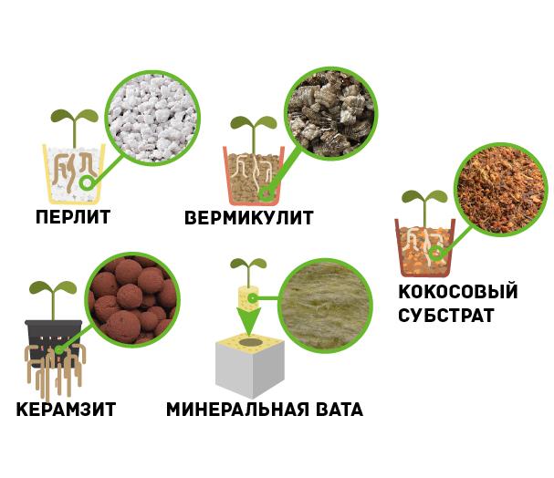Bac гидропоника Псилоцин Сайт Хасавюрт
