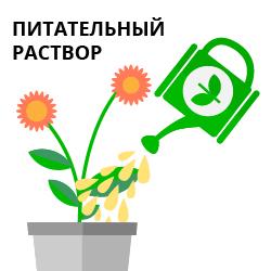 Улучшенное усвоение питания растения