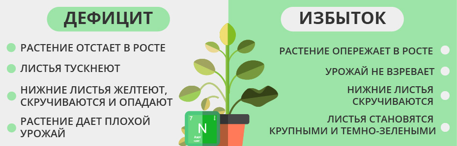 Дефицит и переизбыток азота