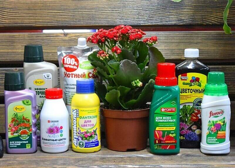 Виды удобрений для растений